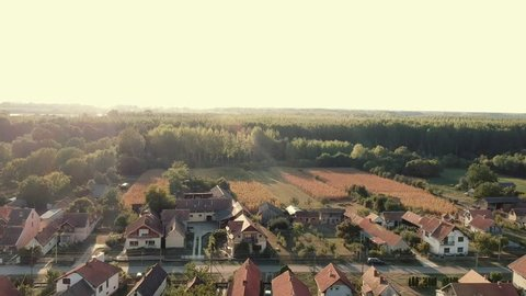 Small village, houses and street aerial view