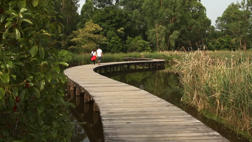 Wooden trail across wetland on the Hong Kong Wetland Park