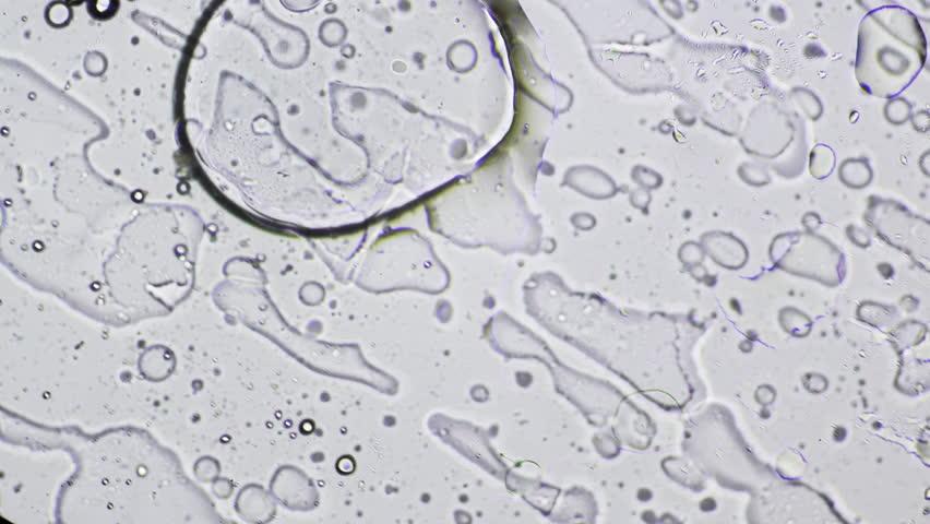 Bright-field microscopic diagonal transition of Oil Water Emulsion