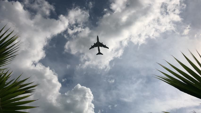 Airplane flying over tropical trees against cloudy blue sky