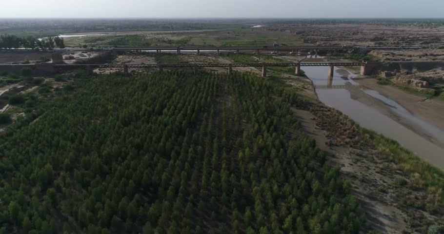 Tree Tsunami near River A