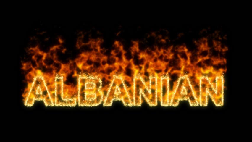 Header of Albanian Capital