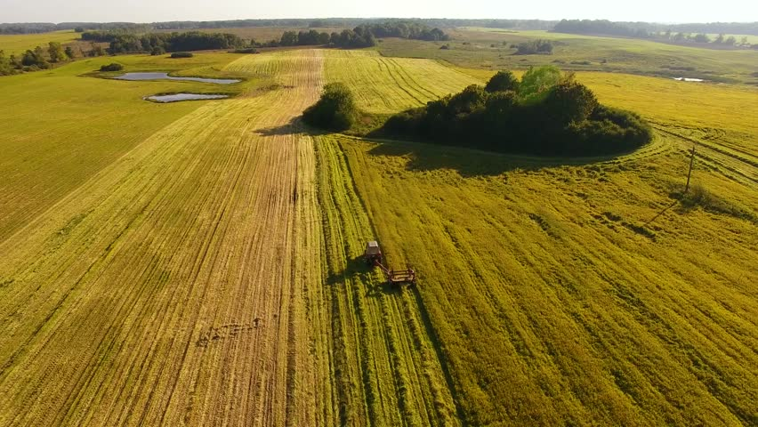 Harvesting on the field, view from above