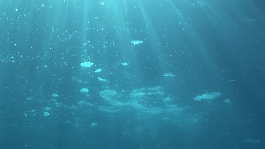 foam on the sea surface underwater