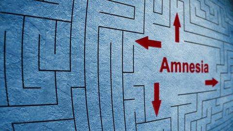 Amnesia maze concept