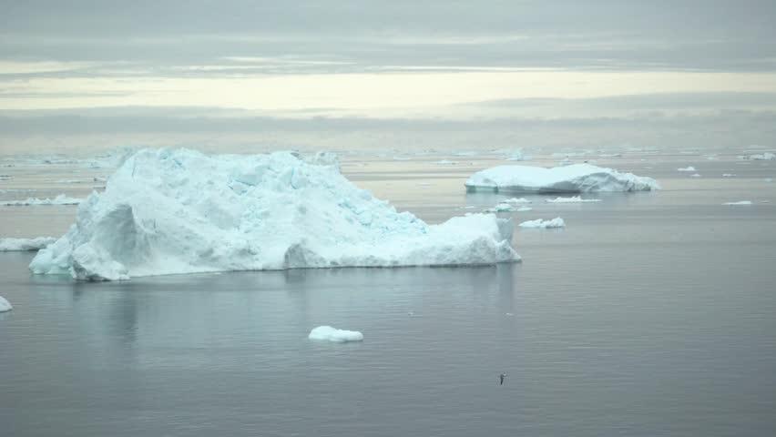 Arctic icebergs on arctic sea in greenland
