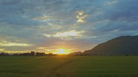 orange sun disk rises on horizon above boundless green rice plantations near majestic hills at pictorial dawn