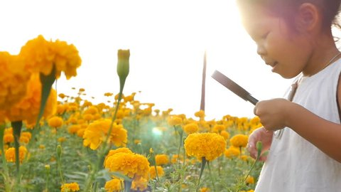 Close-up beauty girl using magnifying glass in gold floral field. Concept of self learning trips lifestyle in springtime.