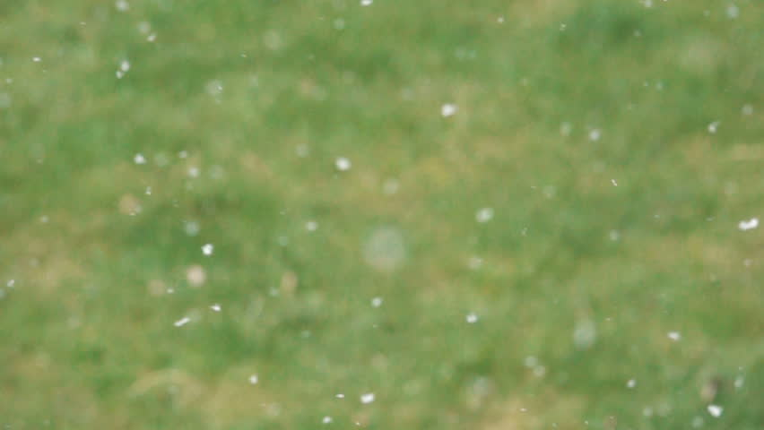 Snow flakes falling in slow motion. Winter nature background. | Shutterstock HD Video #31644709