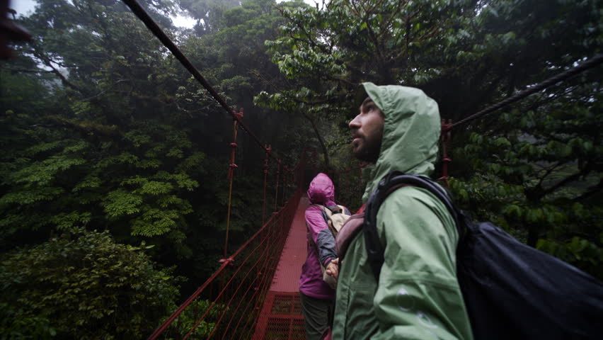 Couple walking hand by hand on hanging bridge through rain forest, national park Monteverde, Costa Rica | Shutterstock HD Video #31820299
