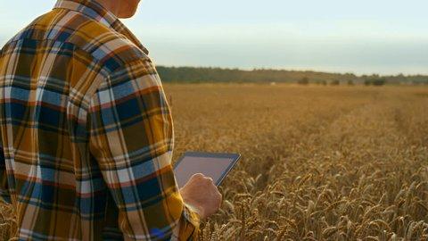 Smart farmer use drone for spray pesticide field. Shot in Red Epic Dragon