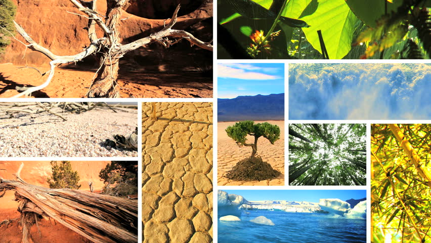Montage View Of Earths Natural Climate In Different Global