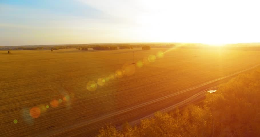 UHD 4K aerial view. Mid-air flight over yellow wheat rural field at sunny summer day. Sun rays and green trees on horizon. Fast horizontal movement. | Shutterstock HD Video #32551549
