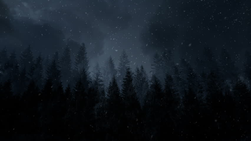 Dark Winter Background With Mysterious Stock Footage Video