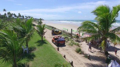 Porto de Galinhas, Pernambuco - Brazil. Brazilian beach buggy sand riding - Aerial view