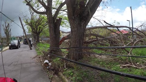 San Juan, Puerto Rico - October 03, 2017: Trees uprooted and power lines collapsed on a sidewalk