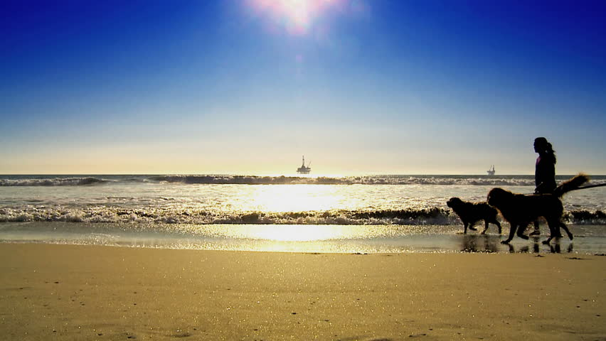 Dog walkers on beach with oil platform in the distance