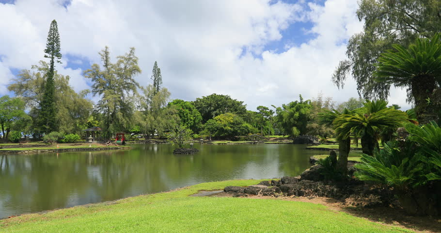 Hilo Hawaii botanical garden plants pond. Big Island rain forest environment and landscape. River and stream with waterfalls. Beautiful green landscape and nature.