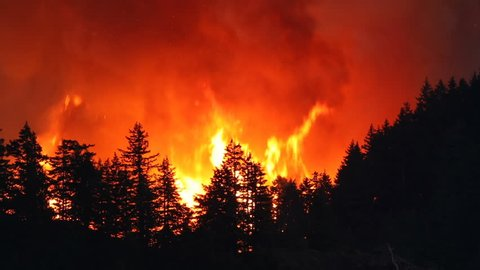 Large forest fire burns the tree covered side of a mountain near Portland Oregon