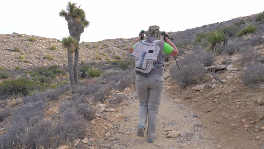 A female tourist with a backpack and trekking sticks, she climbs the mountain path up the hill, takes off her hat. Rear view, slow motion. Joshua Tree National Park, California, America.