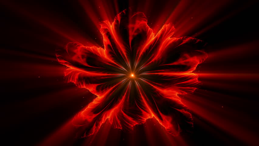 Blazing red fiery flower made of flames with rays of light on black, burning red floral colorful abstract background,  animated abstract illustration, 30fps, HD1080, seamless loop