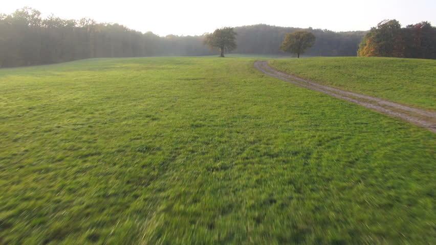 bird´s eye view grassland and wood in autumn