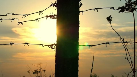 Detail of a prison or military fence of barbed wire at sunset close-up. The border zone, the danger zone, the security zone, the fence of the military unit and the prison against the sunset.