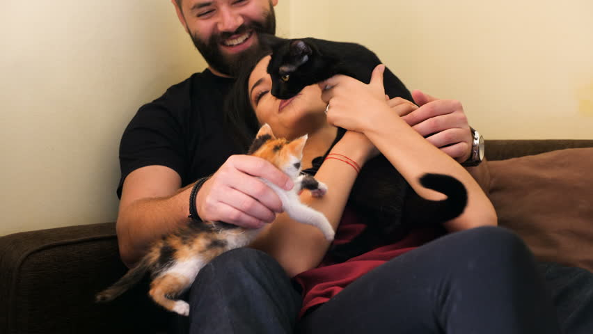 Young couple in the living room relaxing and playing with their adorable cats. One cat is black and the other is red. Animal lovers