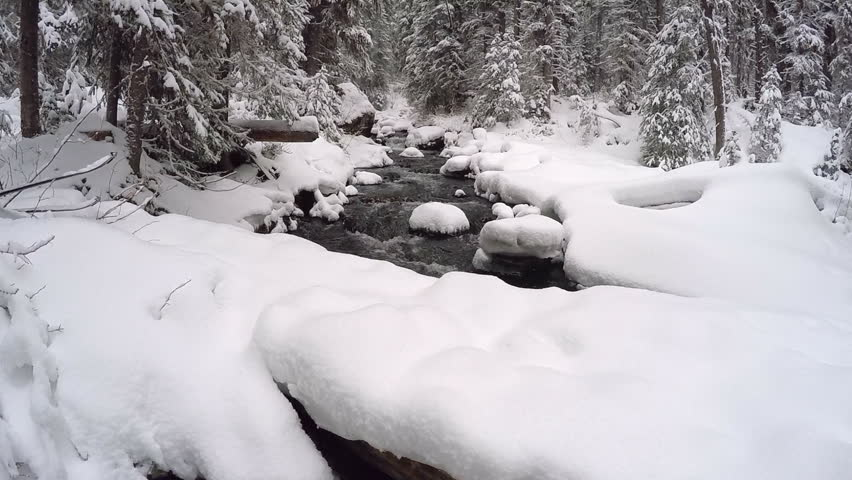 Beautiful snow covered creek in winter Montana mountains