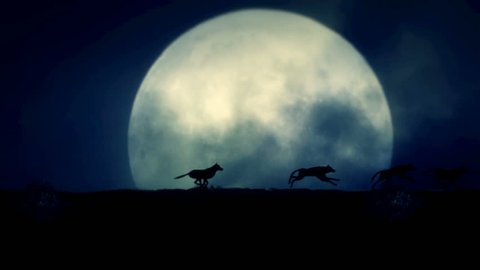 Four Wolves Running at Night on a Full Moon Background