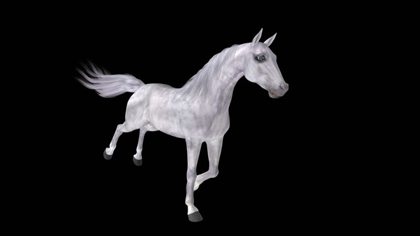 White Horse - Galloping Loop - Side Angle View - 4K Ultra HD Realistic 3D character animation with alpha channel isolated on transparent background.