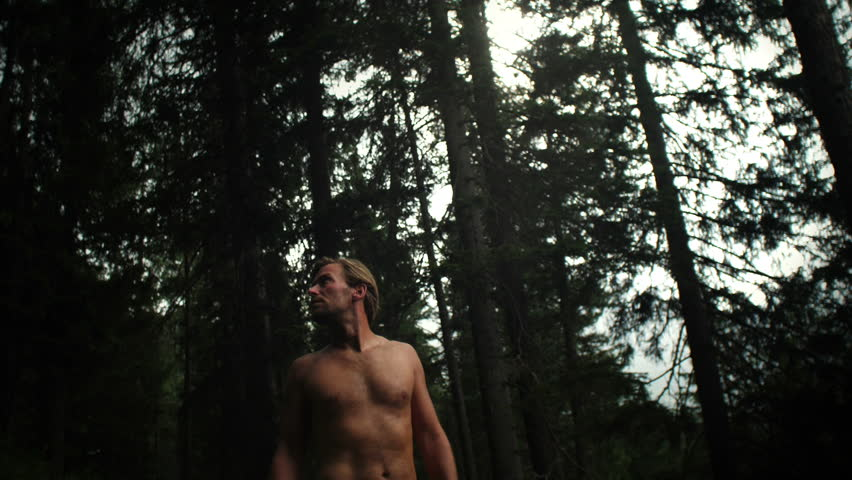 Man connected with nature environment staring at forest trees