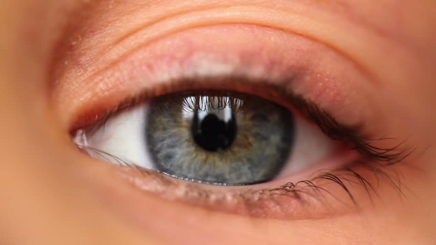 Left blue eye with reflection of house blinks, close-up