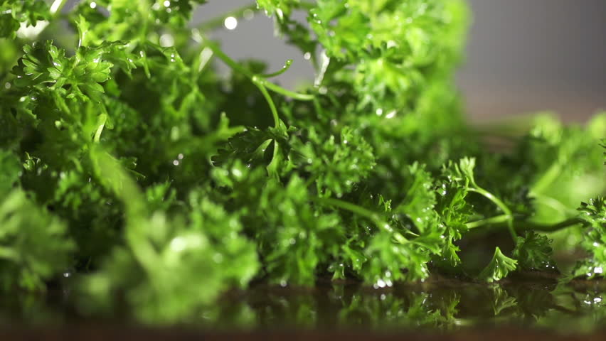Fresh organic parsley with knife on wooden cutting board. Macro with shallow