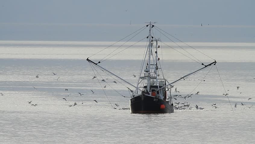 Header of trawler