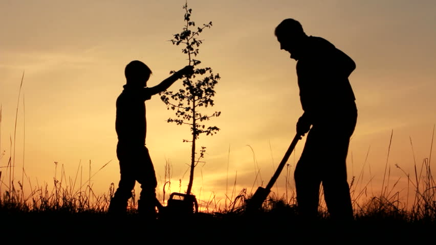 Father and son planting a tree. Sunrise. Silhouette. Spring. | Shutterstock HD Video #3863342