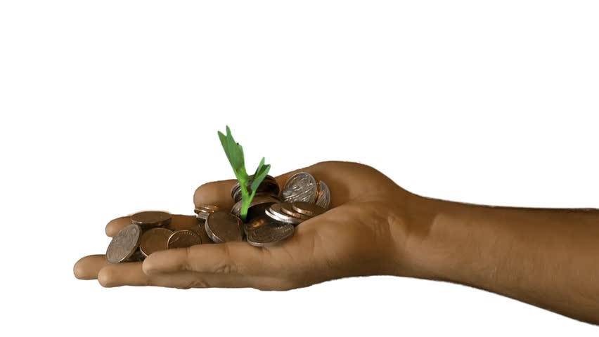 A seedling growing from a hand with money/coins