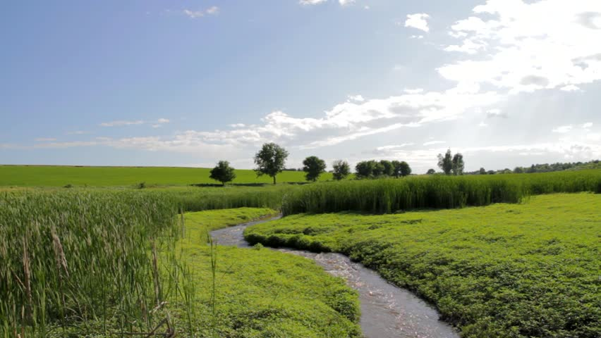 River Flowing Through Rice Field Green Travel Holiday Background HD