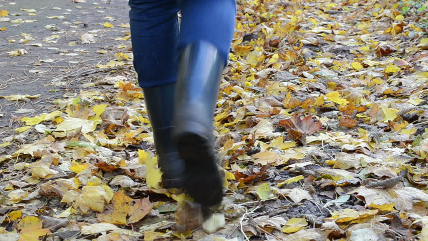 woman legs in rubber shoes walk toward on park forest path covered with autumn colorful leaves.