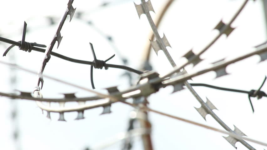 Rack focus of barbed wire at daytime, spikes and wires
