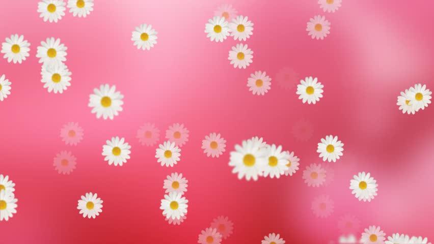 Beautiful Flowers Video Background Loop Free Hd - Flowers
