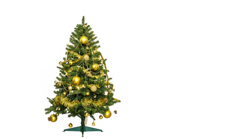 Christmas Tree Animation. Stop motion of a green Christmas tree with animated gifts.