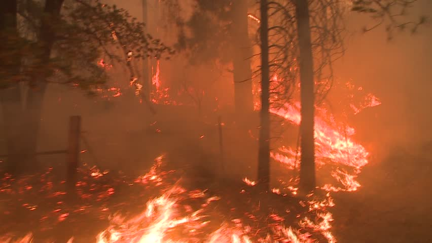 LARGE FOREST FIRE DOLLY  TYPE MOVING SHOT WITH HEAVY SMOKE AND FLAMES CLOSE UP WITH TREES AND BRUSH FLAMING IN CALIFORNIA HD HIGH DEFINITION 1080 1920X1080 STOCK VIDEO CLIP FOOTAGE