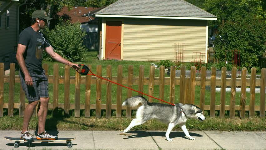 Dog pulling man on skateboard, slow motion