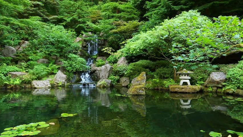 Japanese Botanical Zen Garden Stock Footage Video (100% ...
