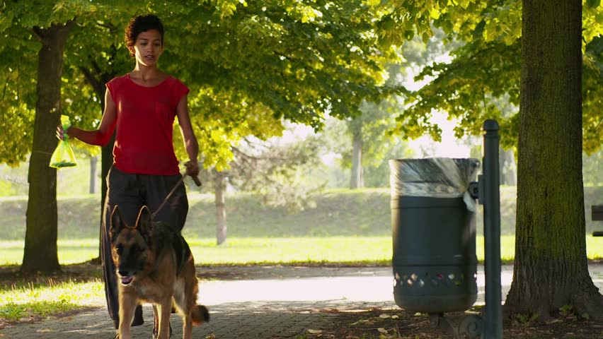 8of15 People working as dog-sitter, girl with alsatian dog in park. Dog walking, young hispanic woman throwing poo bag in trash can