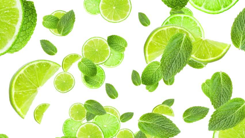 Cocktail citrus theme animation  #4748429
