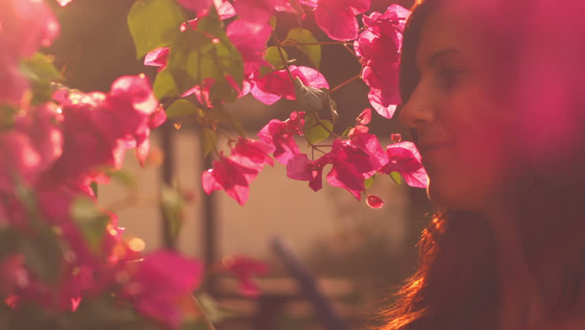 A cute young woman walks through a bunch of pink flowers and smiles