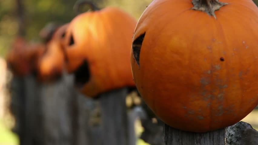 Pumpkinheads 1. Rotting jack o lanterns on fence posts in a rural area. Rack