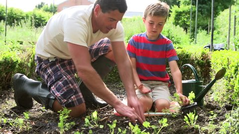 Father and son planting seedlings and watering them in backyard garden